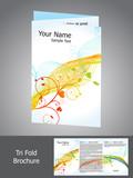 abstract trifold brochure template poster