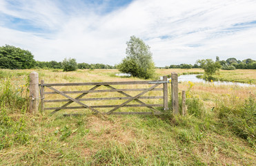 Wooden gate in a rural summer landscape