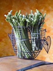 asparagi 4