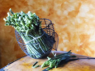 asparagi 3