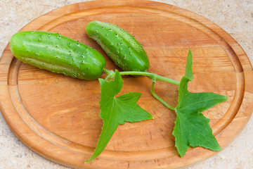 Fresh cucumbers with leaves on wooden cutting board