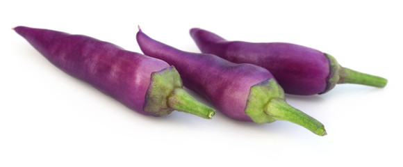 Fresh violet chili peppers