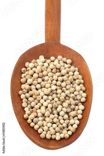 White Peppercorns – A Kind of Black Peppers on a vintage spoon