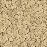 Cracked Brown Soil. Seamless Texture.