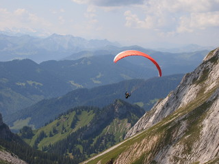 Alpine flight