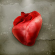 Human heart old style