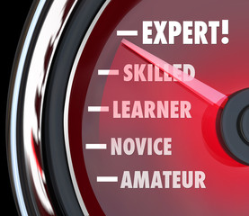 Expert Speedometer Measuring Skill Level from Novice to Skilled