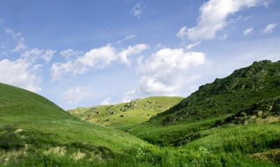 Summer Tien-Shan mountains, Kazakhstan