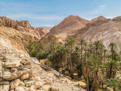 Foto op Aluminium Tunesië mountain oasis Chebika in Sahara desert, Tunisia