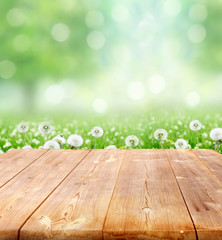 spring background with wooden planks