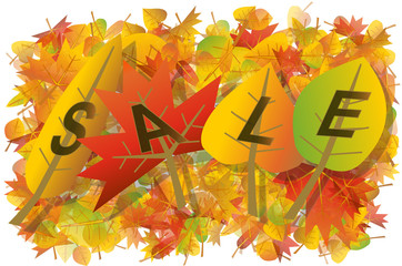 Autumn leaves sale illustration