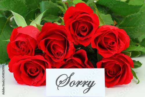 Sorry card with red roses