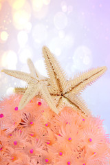 Sea stars over pink coral