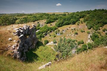 Cheddar gorge cliffs in Somerset, England
