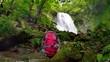 清流と森のトレッキング