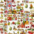 SommerGenuss - Früchte - Vielfalt - Collage