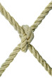 Rope,tied in a knot on a white background.