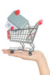 House and home buying in shopping cart real estate concept