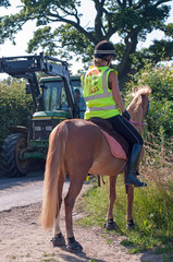 Road safety on horses