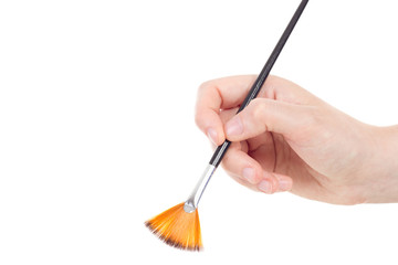 Caucasian hand with fan shaped brush