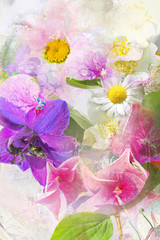 Beautiful summwer flowers background