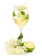 Leinwandbild Motiv Cocktail - Hugo