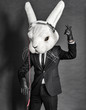 Rabbit Dj  in balck suit on dark background - 54867576
