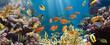 Leinwanddruck Bild - Coral and fish