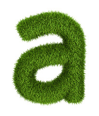 Natural grass letter a lowercase