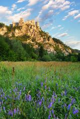 Ruin of castle Strecno - Slovakia