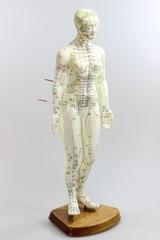 Akupunktur02