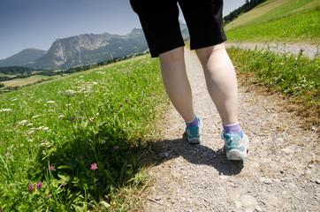 Wandern auf einem Weg mit Wiesen und Blumen