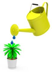 Die Pflanzen gießen