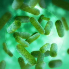 Bakterien hinter glas - 3d Render