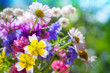 Colorful meadow flowers summer bouquet