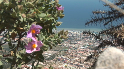 Spanish city of Benalmadena
