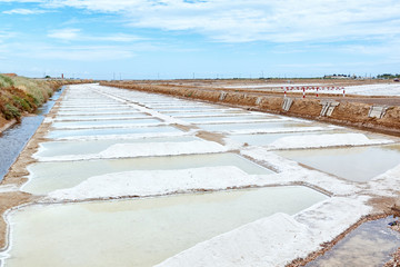 Salt lakes in the field of Portugal. Summer.