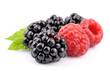 Fresh ripe berry