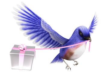 青い鳥とプレゼントの箱