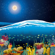 Seascape with underwater creatures and night sky