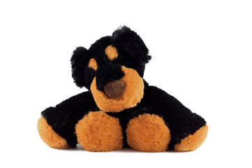 Funny plush black dog sitting on a white background