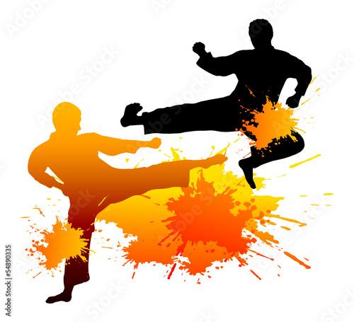 Fototapeta Taekwondo - 9