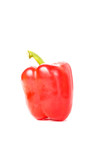 Single Red Bell Pepper on White