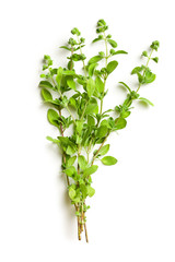 sprig of marjoram