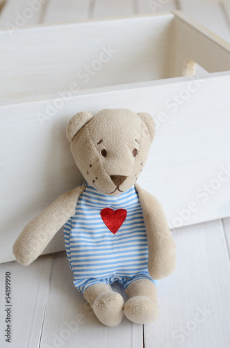 Little teddy bear on light background