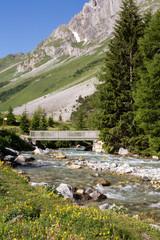 Rivière et pont en montagne
