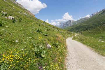 Vallée pastorale de Chavière