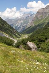 Vallée de Chavière - alpage et sommets