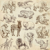 Animals around the world (collection no.1, old paper )