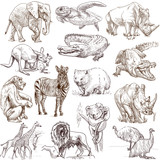 Animals around the world (collection no.1, white )